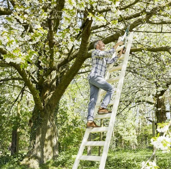Intercon® Obstbaumleiter Elstar | 13 Stufen 380 cm